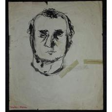 Dublu portret - DIMITRIE STELARU de George TOMAZIU - tus pe hartie