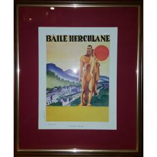 """AFIS OFICIUL DE TURISM """" BAILE HERCULANE """""""