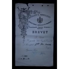 "BREVET, MINISTERUL AERULUI SI MARINEI, CAROL II, ISIGNA "" APARAREA PASIVA"" 1940"