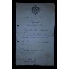 BREVET, FERDINAND I, MINISTERUL DE RESBOIU, CRUCEA COMEMORATIVA FARA BARETE, CARACAL, 1919