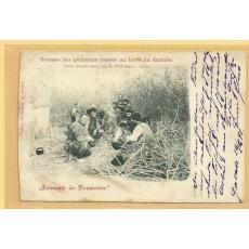 CARTE POSTALA, GALATI, PESCARI RUSI IN DELTA DUNARII, CLASICA, 1898