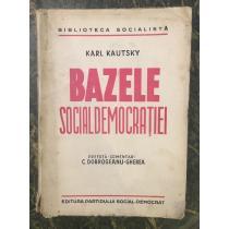 BAZELE SOCIAL-DEMOCRATIEI