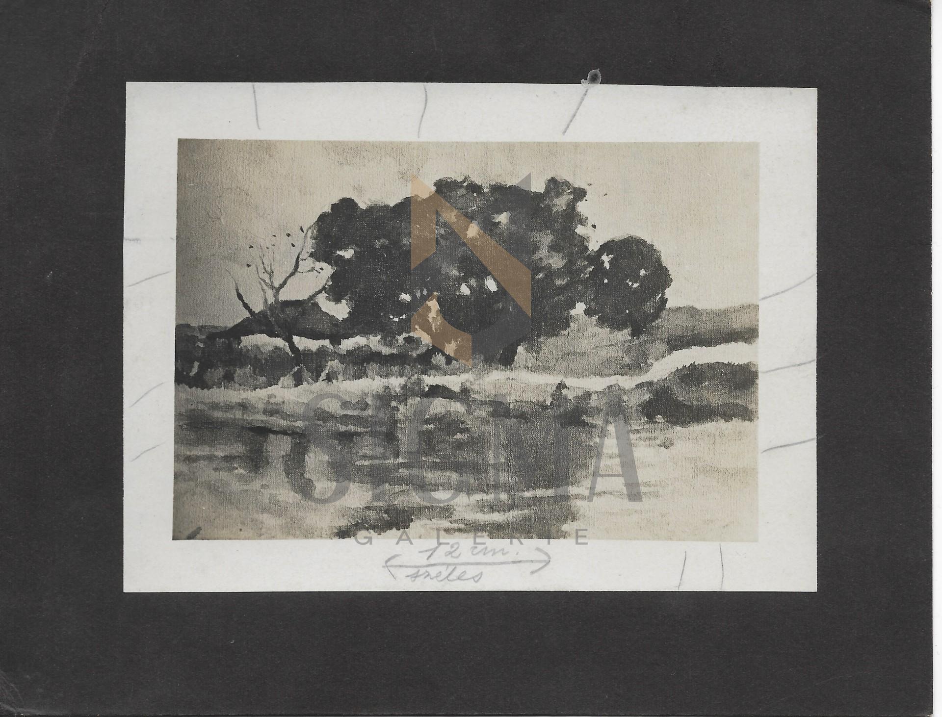 "FOTOGRAFIE ORIGINALA, TABLOU STEFAN LUCHIAN ""PEISAGIU"" (REVISTA LUCEAFARUL) 1908"
