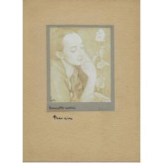 FOTOGRAFIE ORIGINALA, TABLOU TEODORESCU - SION  - PERSONAJ FEMININ ( REVISTA LUCEAFARUL) 1919