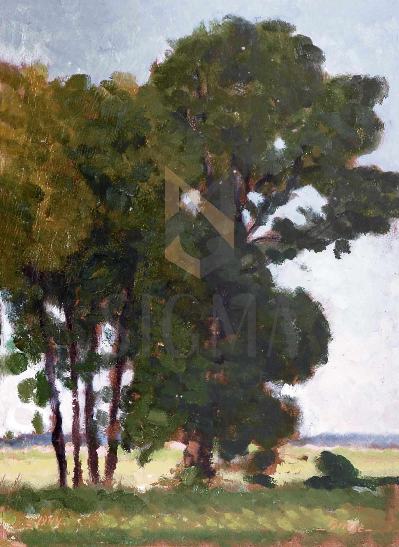 "Tablou OTTO BRIESE ""Copaci singuratici""  ulei pe carton, 42,5 x 32 cm datat 1944, semnat dreapta jos Briese"