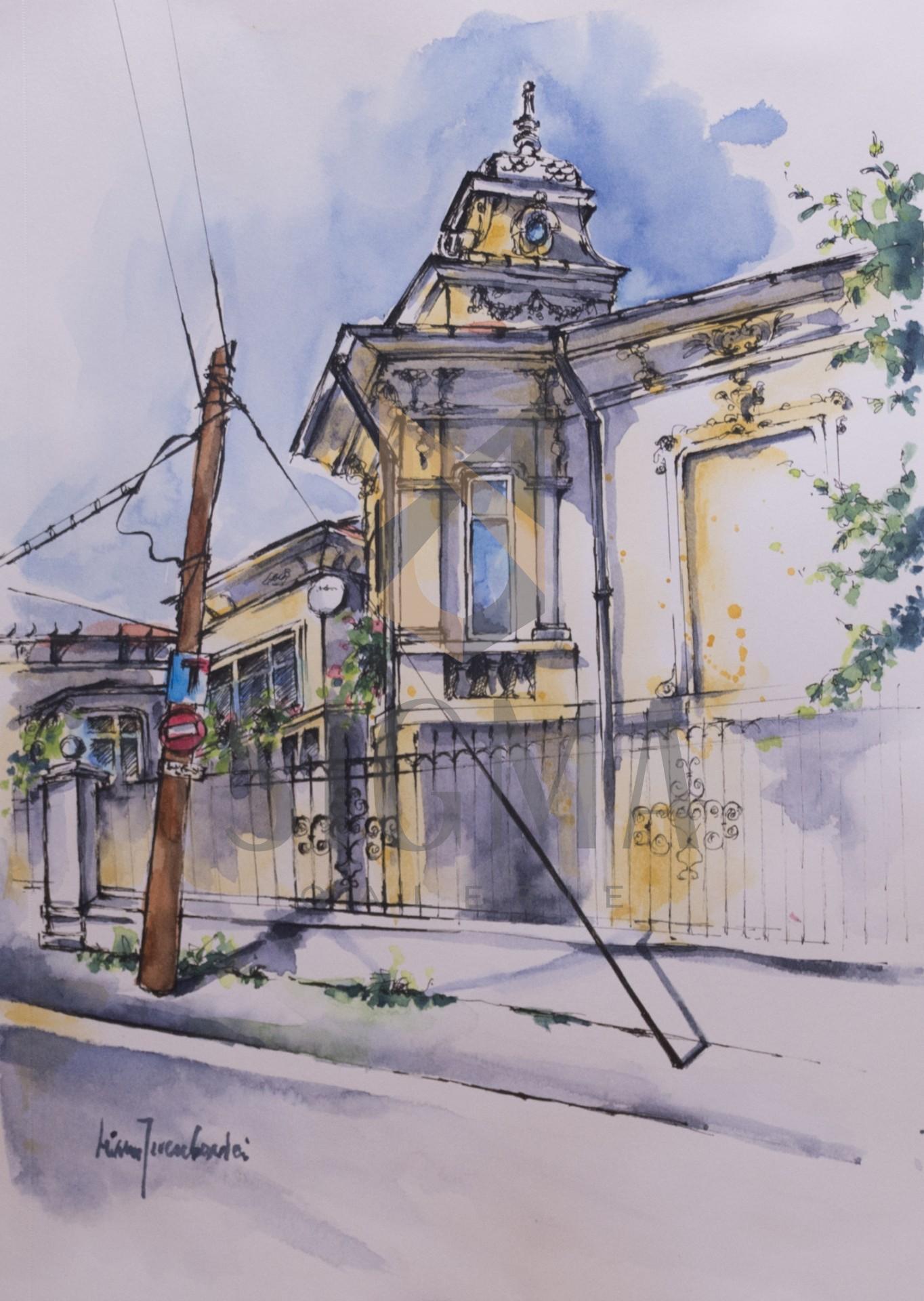 Tablou, Liliana Iacubovici, - Cotroceni villa Eugenia, intrarea Costache Negri -   acuarela si tus, 21x30 cm