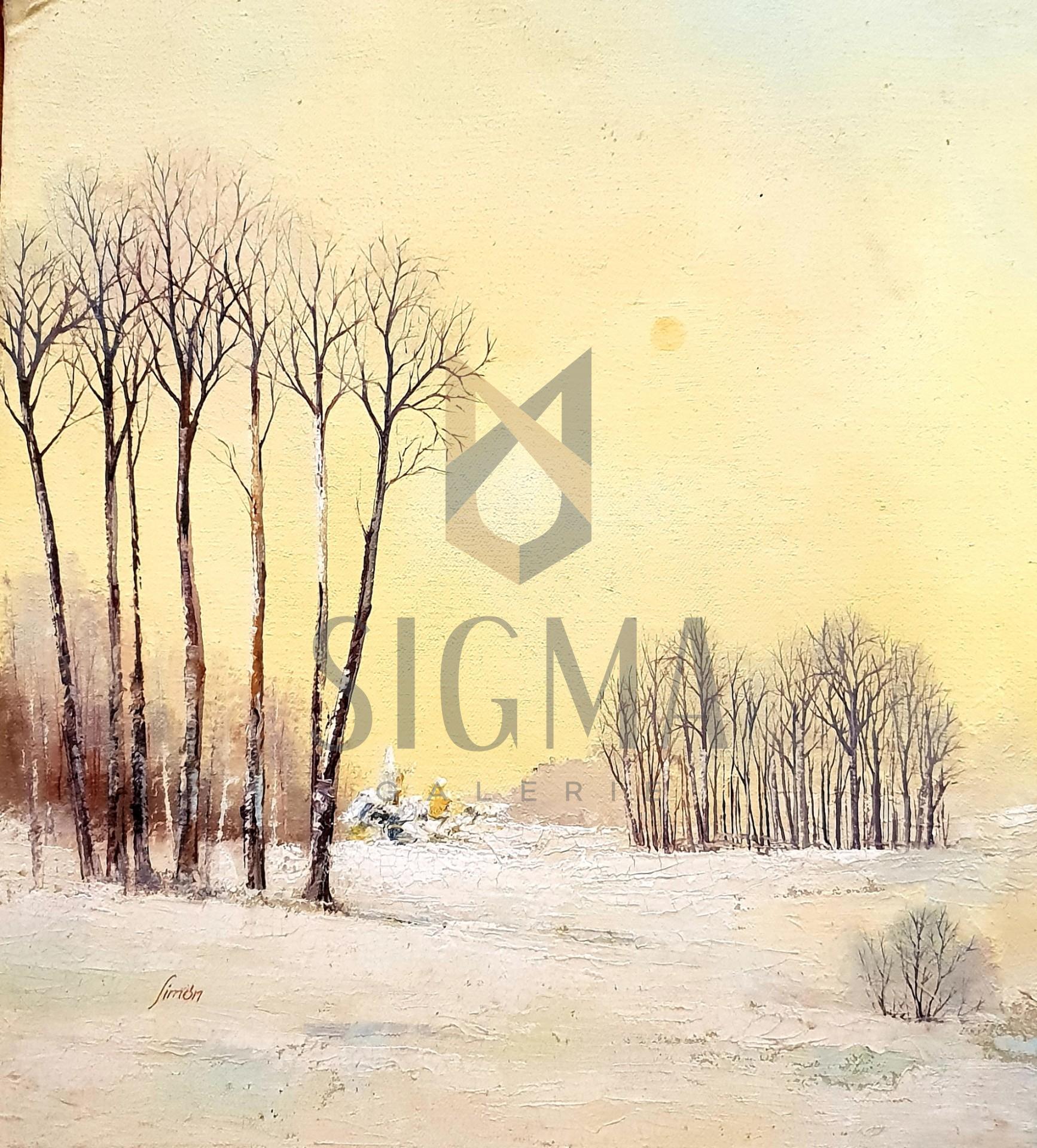 Tablou, - Peisaj de iarna - ulei pe carton,  44 x 40 cm, semnata Simon