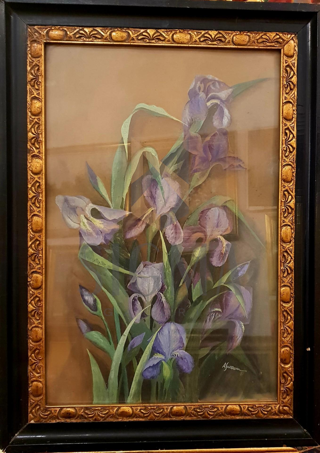 """Tablou, Angiolina Santocano, """"Irisi"""" , acuarelă pe carton subțire, 60 x 40 cm"""
