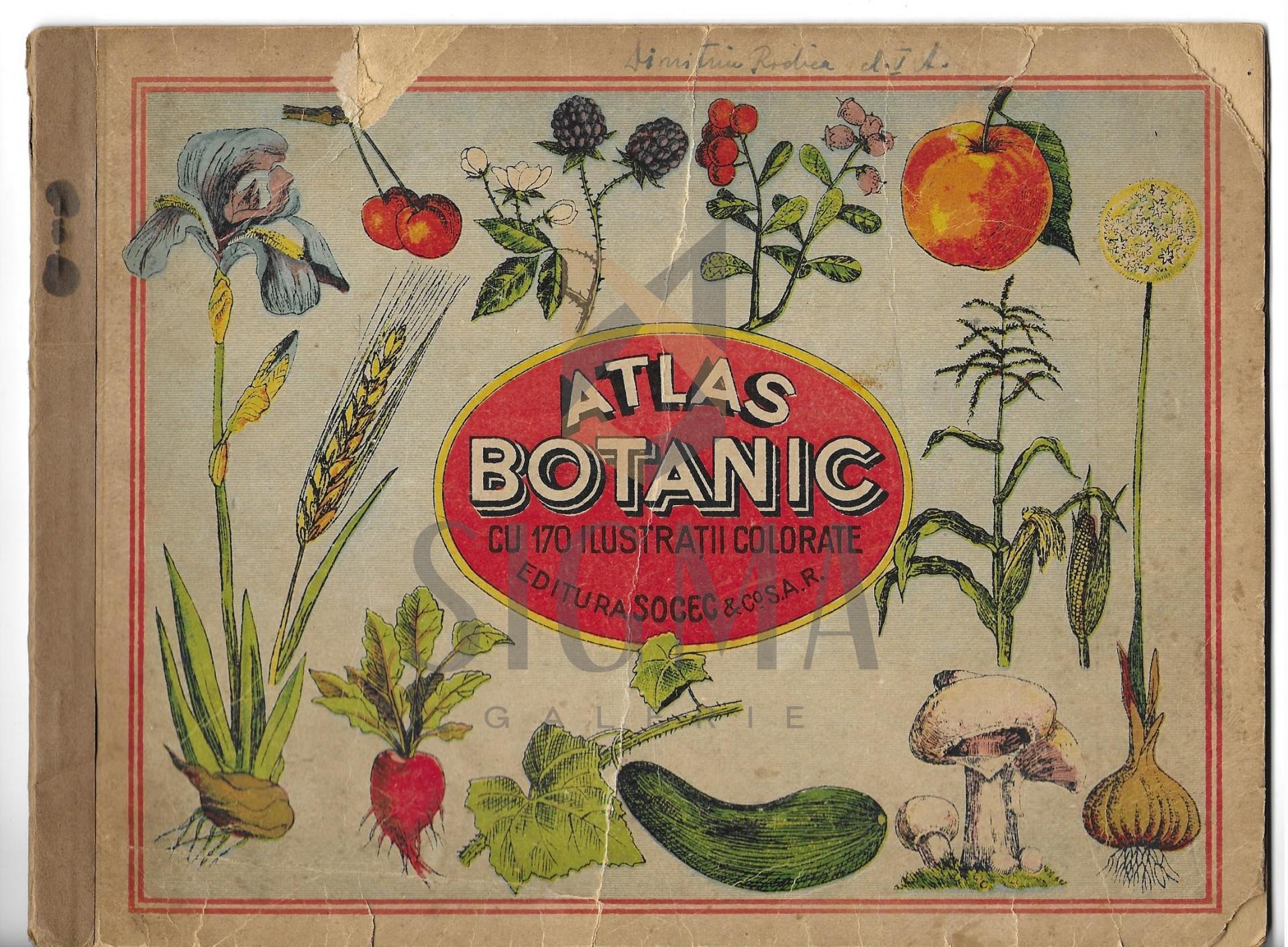 ATLAS BOTANIC  cu 170 ilustratiuni colorate, Bucuresti